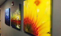 Canvasdoeken / Foto op canvas